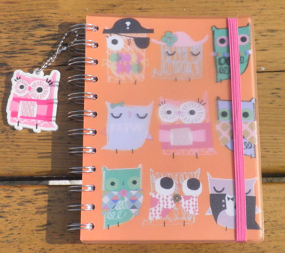 Paperchase Owl Journal